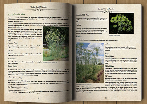Lost Book of Herbal Remedies