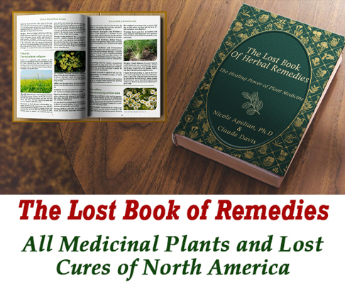 Book Of Herbal Remedies
