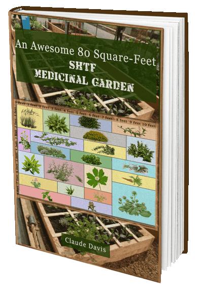 SHFT Medicinal Garden